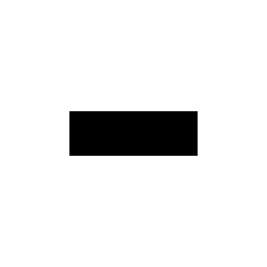 logo Dinh-Van